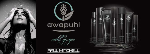 280761-PaulMitchellAwapuhWildGingerHairTreatment